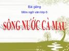 Bài giảng Ngữ văn 6 bài 19 bài Sông nước Cà Mau
