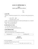 Giáo án bài: Trường hợp đồng dạng thứ hai - Hình học 8 - GV.Hoàng Thu Trang