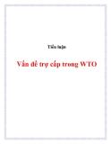 Tiểu luận:Vấn đề trợ cấp trong WTO
