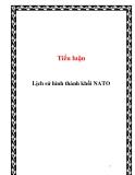 Tiểu luận:Lịch sử hình thành khối NATO