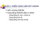 Triển vọng liên kết ASEAN