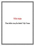 Tiểu luận: Tìm hiểu truyền hình Việt Nam