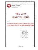 Tiểu luận:Tác động của thu nhập ròng nước ngoài, cung tiền m1 và tiêu dùng tư nhân lên thu nhập quốc gia