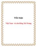 Tiểu luận:Việt Nam và cân bằng Xô-Trung