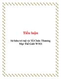 Tiểu luận: Sở hữa trí tuệ và Tổ Chức Thương Mại Thế Giới WTO