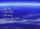 Bài giảng: Cán cân thanh toán quốc tế của Việt Nam
