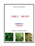 Y học cổ truyền: Chương 13: Phụ lục - Nguyễn Khắc Bảo
