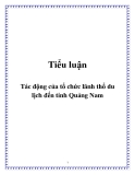 Tiểu luận: Tác động của tổ chức lãnh thổ du lịch đến tỉnh Quảng Nam