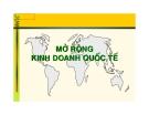 Kinh doanh quốc tế:Mở rộng kinh doanh quốc tế
