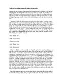 Triết lý âm dương trong đời sống văn hóa việt