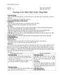 Giáo án Ngữ văn 6 bài 26: Cây tre Việt Nam