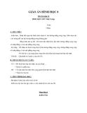 Giáo án bài: Hình hộp chữ nhật (tiếp theo) - Hình học 8 - GV.Phạm Ngọc Lý