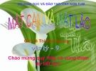 Bài giảng Vật lý 9 bài 49: Mắt cận và mắt lão