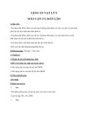 Giáo án Vật lý 9 bài 49: Mắt cận và mắt lão
