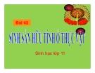 Bài giảng Sinh học 11 bài 42: Sinh sản hữu tính ở thực vật
