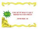 Bài giảng Sinh học 10 bài 18: Chu kì tế bào và quá trình nguyên phân