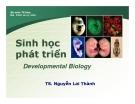Sinh học phát triển (TS Nguyễn Lai Thành) - Chương 2.1