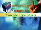 Ngôn ngữ đánh dấu mở rộng -  Chương 04 Cascade Style Sheets
