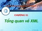 Ngôn ngữ đánh dấu mở rộng - Tổng quan về XML