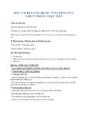 Giáo án Sinh học 10 bài 31: Virut gây bệnh. Ứng dụng của virut trong thực tiễn