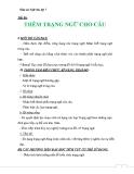 Giáo án Ngữ văn 7 bài 22: Thêm trạng ngữ cho câu
