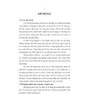 Tiểu luận: Chiến lược phân phối của cà phê Trung Nguyên tại thị trường Việt Nam