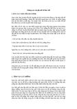 Những câu chuyện kể về Bác Hồ