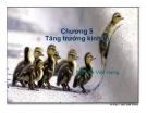 Bài giảng Kinh tế học: Chương V - Nguyễn Việt Hưng