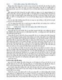 11 Câu hỏi về mạng cảm biến không dây