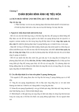 Lịch sử chẩn đoán hình ảnh - Chương 5 Chẩn đoán hình ảnh hệ tiêu hóa