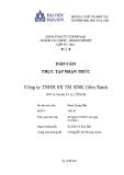 Báo cáo thực tập nhận nhận thức: Công ty TNHH SX TM XNK Gốm Xanh