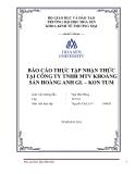 Báo cáo thực tập nhận thức: Công ty TNHH MTV  khoáng sản Hoàng Anh Gia Lai – Kon Tum