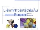 Tiểu luận; Liên minh tiền tệ châu Âu Eurozone