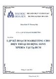 Đề án Lập kế hoạch marketing: Lập kế hoạch marketing cho điện thoại di động Sony Xperia tại Tp. Hồ Chí Minh