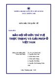 Tiểu luận: Bảo hộ sở hữu trí tuệ, thực trạng và giải pháp ở Việt Nam