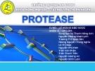Đề tài: Protease