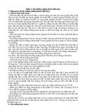 Tìm hiểu thị trường chứng khoán Việt Nam