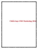 Chiến lược SMS Marketing 2014