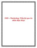 SMS – Marketing: Tiếp thị qua tin nhắn điện thoại