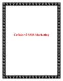 Cơ bản về SMS Marketing