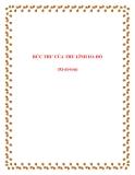 Soạn văn Bức thư của Thủ lĩnh da đỏ