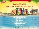 Luận văn: Digital Marketing POCA Pepsi