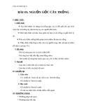 Giáo án Sinh học 6 bài 45: Nguồn gốc của cây trồng