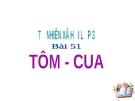 Slide bài Tôm cua - Tự Nhiên Xã Hội 3 - GV.H.T.Minh