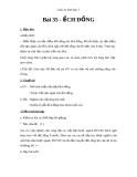 Giáo án Sinh học 7 bài 35: Ếch đồng