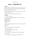 Giáo án Sinh học 7 bài 41: Chim bồ câu