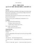 Giáo án Sinh học 7 bài 42: Thực hành quan sát bộ xương, mẫu mổ chim bồ câu