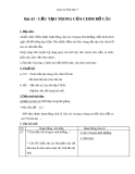 Giáo án Sinh học 7 bài 43: Cấu tạo trong của chim bồ câu