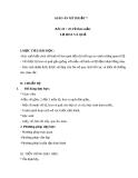Bài 24 + 25: Vẽ theo mẫu lọ hoa và quả - Giáo án Mỹ thuật 7 - GV.N.Văn Chung