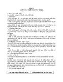 Giáo án Lịch sử 10 bài 13: Việt Nam thời nguyên thủy